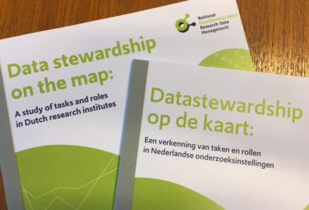 Rapport: Datastewardship op de kaart